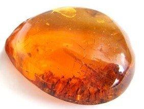 Природный камень янтарь