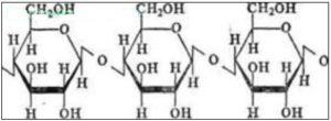 объединение колец глюкозы в макромолекулы целлюлозы