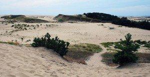Дюны и барханы