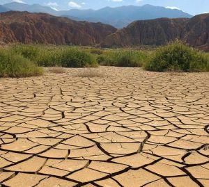 Пустыные такыровидные солончаки