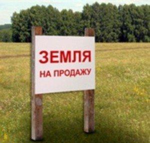 z-15-min