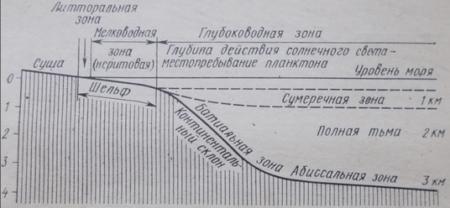 Схематический разрез, иллюстрирующий соотношение между морскими зонами.