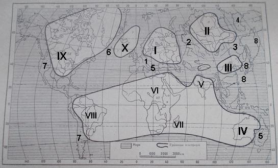 Расположение геосинклиналей и платформ, оформившихся в конце докембрия ( по Н.М. Страхову)